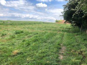 Willow Field Secure Field