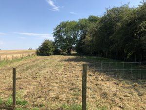 Willow Fields Secure Paddock