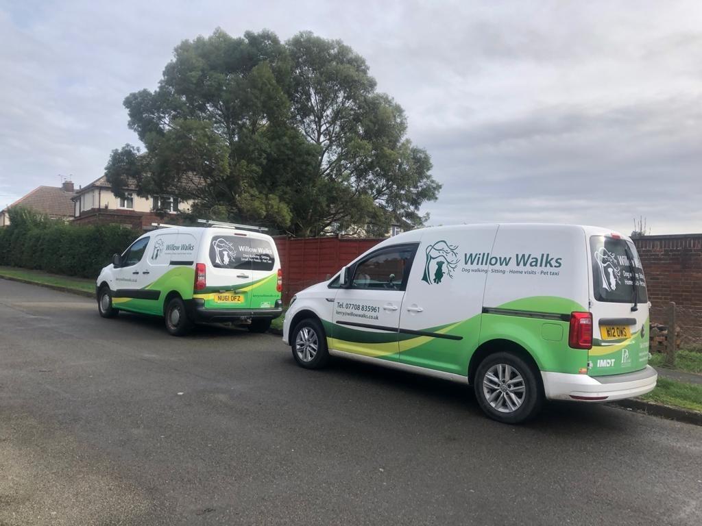 Our Dog Vans